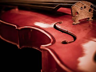 Symphony Of Strings Print by Valerie Morrison