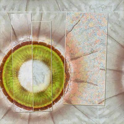 Synaphea Leafless Flowers  Id 16164-001138-23731 Art Print