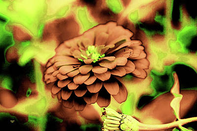 Photograph - Synaptic View by Dennis Baswell