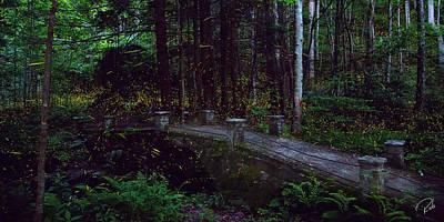 Synchronous Fireflies Art Print