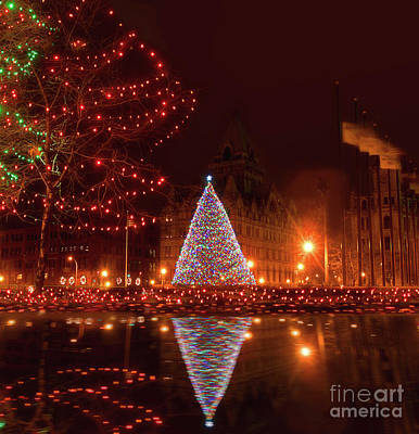 Photograph - Syracuse, Ny Christmas Tree by Debra Millet