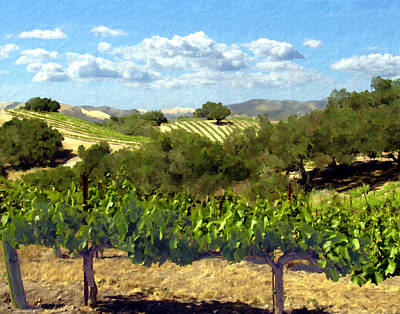 Vineyard Photograph - Syrah For Miles by Kurt Van Wagner
