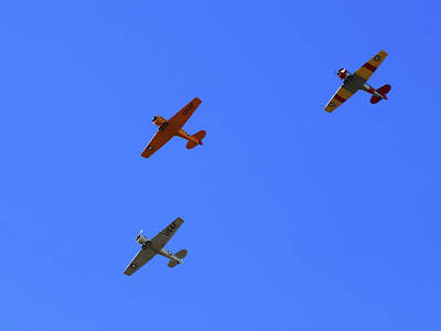 Photograph - T-6 Texans II by Richard Stephen