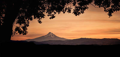 Photograph - Mt. Hood At Sunset by Don Schwartz