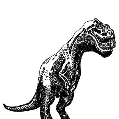 T Rex Drawing - T-rex Dinosaur by Karl Addison