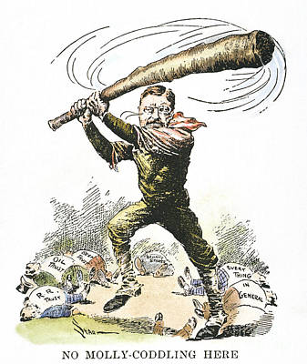 T. Roosevelt Cartoon, 1904 Art Print by Granger