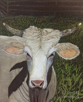 Tuscaloosa Painting - T-town Bull by Margie Altmayer - Artist