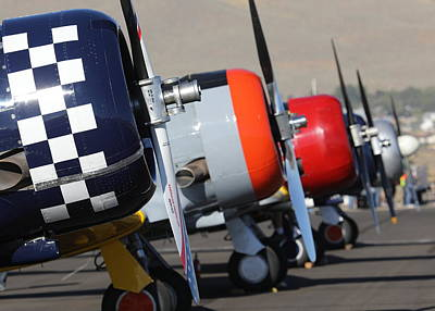 Photograph - T6 Texan Flightline by John King