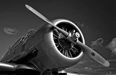 Photograph - T6 Texan by Ian Merton