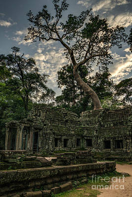 Photograph - Ta Phrom Massive Tree by Mike Reid