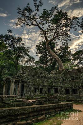 Photograph - Ta Phrom Massive Tree by Mike Reid