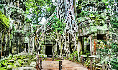 Photograph - Ta Prohm Famous Tomb Raider Bayon Tree  by Chuck Kuhn