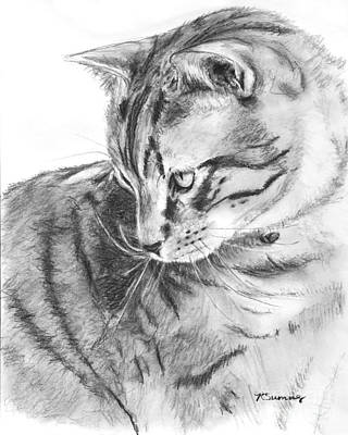 Drawing - Tabby Cat In Profile Drawing by Kate Sumners