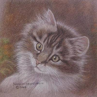 Painting - Tabby Kitten by Dorothy Coatsworth