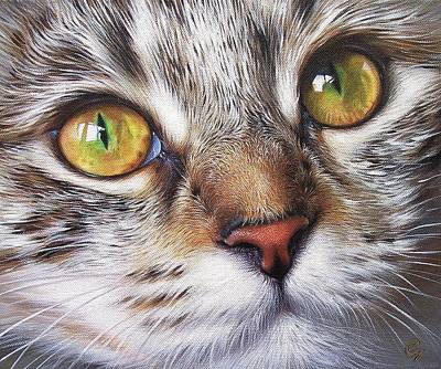 Tabby Look Art Print