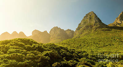 Photograph - Table Mountain National Park by Tim Hester