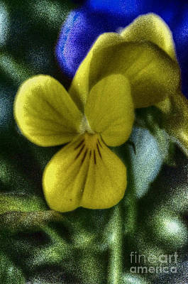 Anchor Down - Table Top Flowers #3 by Eric Geschwindner