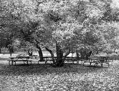 Cslanec Photograph - Tables And Tree by Christian Slanec
