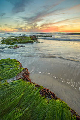 Photograph - Tabletops And Surfgrass by Alexander Kunz