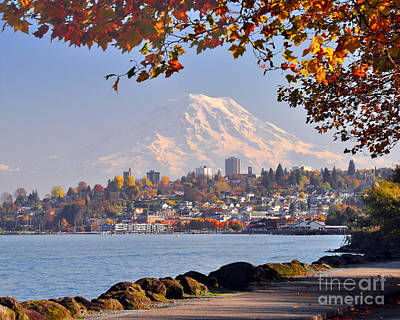 Photograph - Tacoma N Mt Rainier by Jack Moskovita
