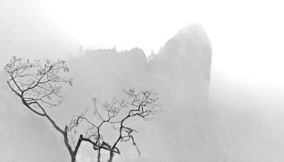 Taft Point In Mist Art Print