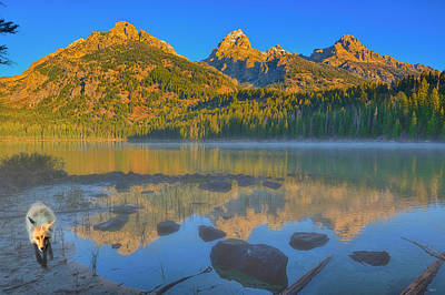Photograph - Taggart Lake Morning by Greg Norrell