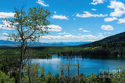 Photograph - Taggart Lake by Sharon Seaward