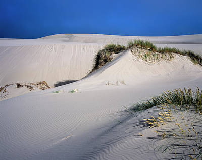 Photograph - Tahkenitch Dunes by Robert Potts