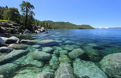 Photograph - Tahoe Blue by Sean Sarsfield