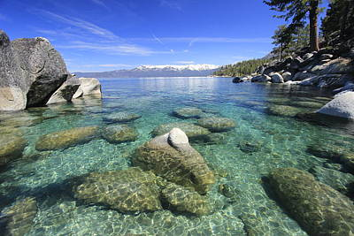 Photograph - Tahoe Oasis by Sean Sarsfield