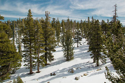 Photograph - Tahoe Winter by Suzanne Luft