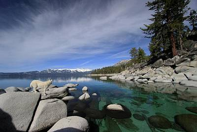 Photograph - Tahoe Wow by Sean Sarsfield