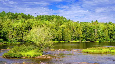 Photograph - Tahquamenon River by Alexey Stiop