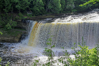 Photograph - Tahquamenon Upper Falls 1 by Mary Bedy