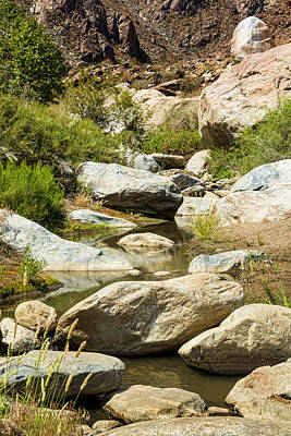 Tahquitz Creek Art Print by Kelley King
