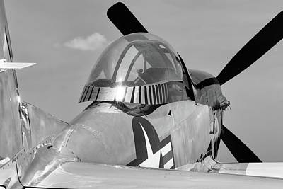 Photograph - Tail View Of Quick Silver by Chris Buff