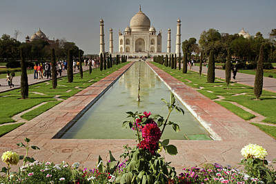 Persian Onion Photograph - Taj Mahal Mausoleum With Roses by Aivar Mikko