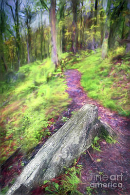Painting - Take A Hike In The Blue Ridge Ap by Dan Carmichael