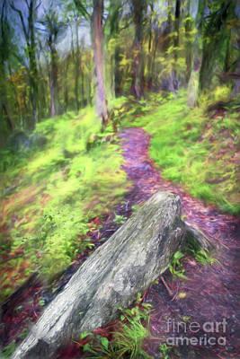 Painting - Take A Hike In The Blue Ridge Ap by Dan Carmichael