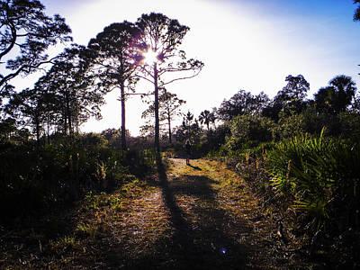Sunshine Photograph - Take Advantage by Ric Schafer