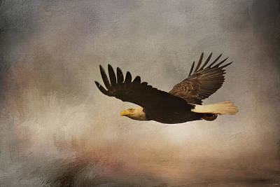 Photograph - Take Flight by Jai Johnson