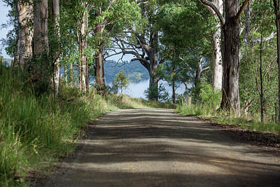 Royalty-Free and Rights-Managed Images - Take Me Home Country Roads by Az Jackson