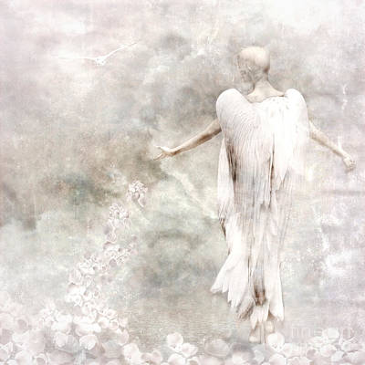 Wing Mixed Media - Take Me Home by Jacky Gerritsen