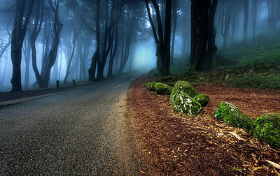 Photograph - Take The Journey by Jorge Maia