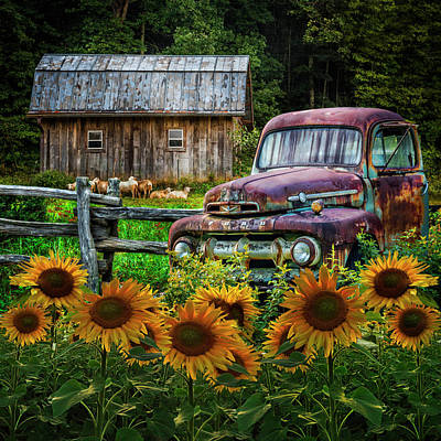 Photograph - Take Us For A Ride In The Sunflower Patch by Debra and Dave Vanderlaan