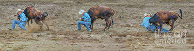 Photograph - Takedown Rodeo Calf Roping by Randy Steele