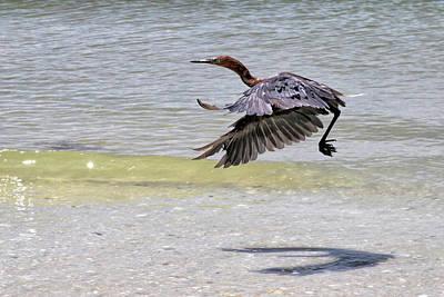 Photograph - Takeoff by John Loreaux