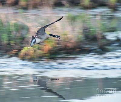 Photograph - Takeoff by Nicki McManus