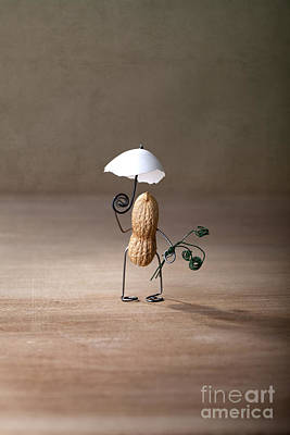 Parasol Photograph - Taking A Walk 01 by Nailia Schwarz