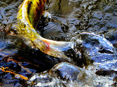 Photograph - Tale Of The Wild Koi by September  Stone